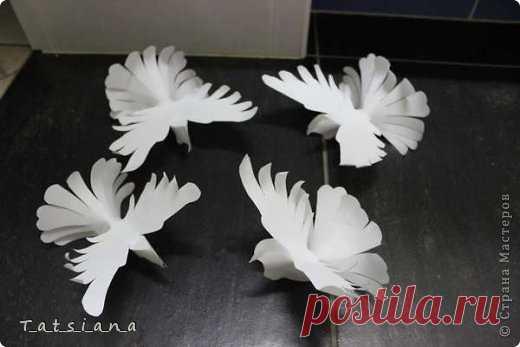 И взмыли в небеса белые голуби, унося с собою наши мечты...   Страна Мастеров