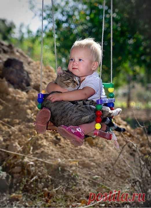 (+1) тема - Пост, доказывающий что у кошек золотые сердца   Занимательный журнал
