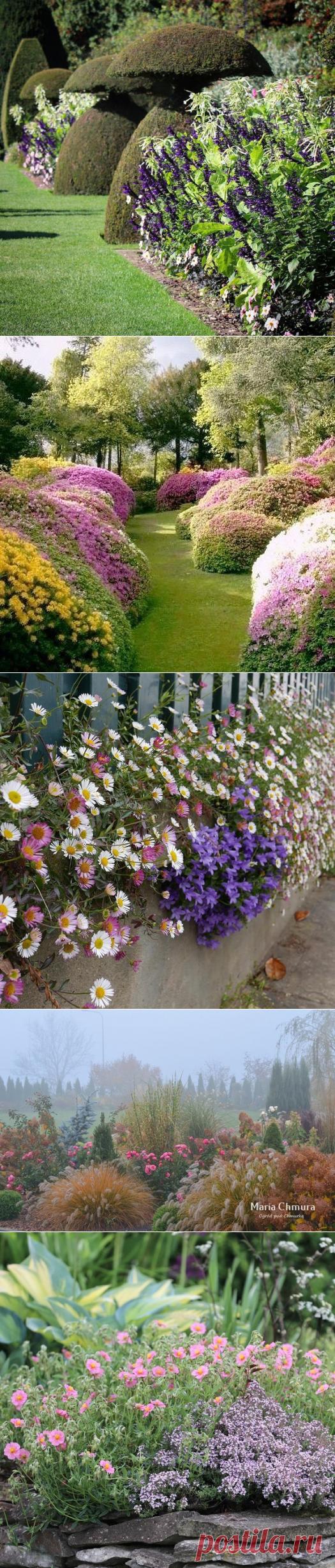 Клуб цветоводов
