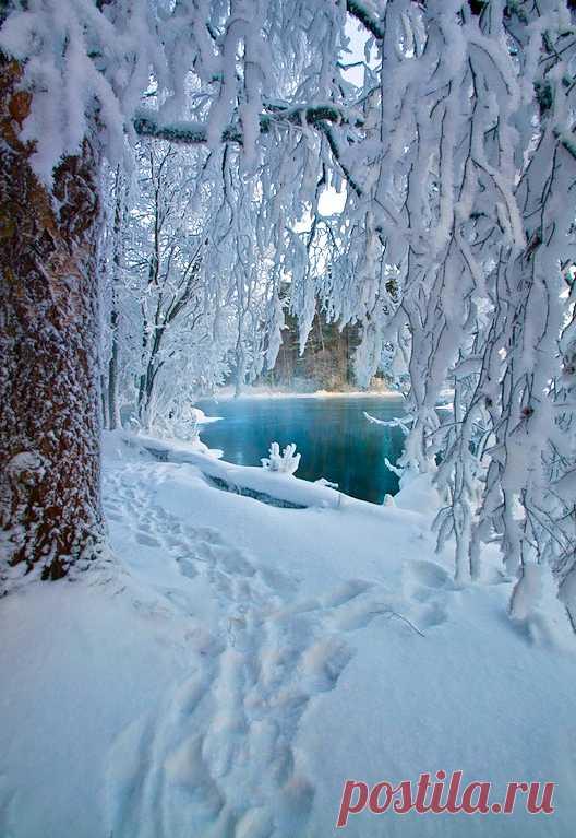 """coiour-my-world: """"Winter in Finland """" ♡♡♡"""