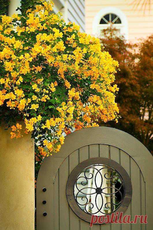 Неописуемая красота: креатифф-подход к заборам и калиткам на садовом участке Очень симпатичный подход к вопросу - и красиво, и враг не пройдетЬ! :)