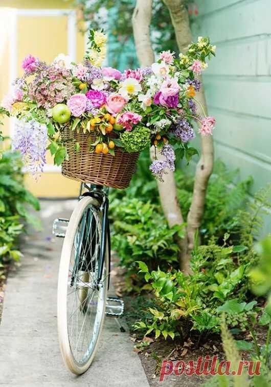 flower house – Google +