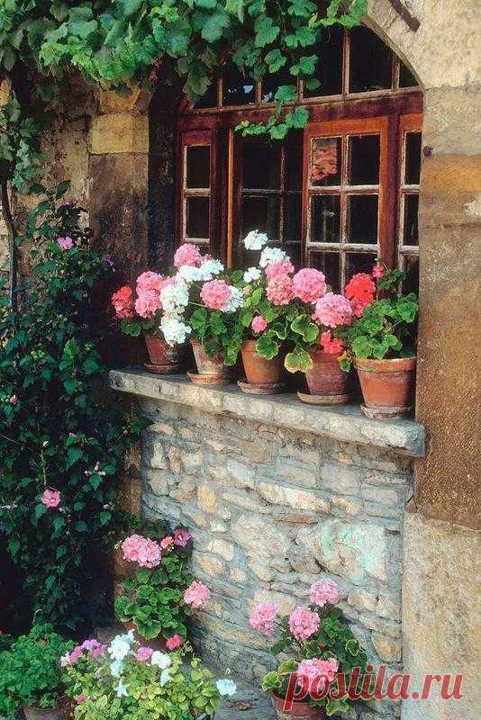 Цветами в горшках можно успешно украсить ваш сад