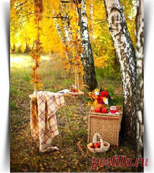 Красив пейзаж осенней акварели,  Сама природа красками творит;  Замедлен ход у жизни карусели,  На сцене нынче осень фаворит!    Лина Черницкая