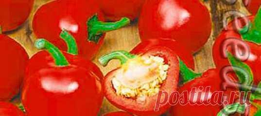 Перец острый Жгучая Вишенка, 0,2 г Очень красивый раннеспелый сорт с плодами, похожими на помидорчики. Куст компактный, высотой до 40 см. при выращивании на окне или балконе,  и до 80 с...