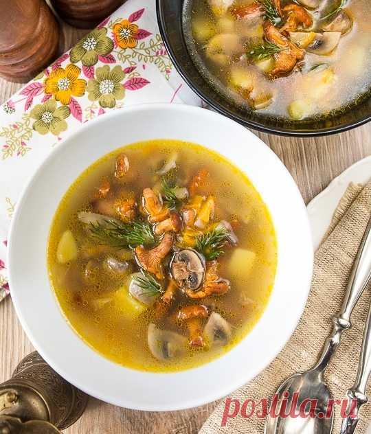 Грибной суп с лисичками и шампиньонами Ингредиенты:Куриный или овощной бульон — 1,6 лКартофель — 3–4 шт.Морковь средняя — 1 шт.Луковица средняя — 1 шт.Шампиньоны — 300 гЛисички — 400 гСоль — по вкусуЗелень — для...