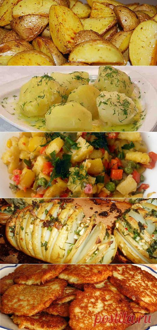 диетические блюда из картофеля рецепты с фото простым наглядным управлением
