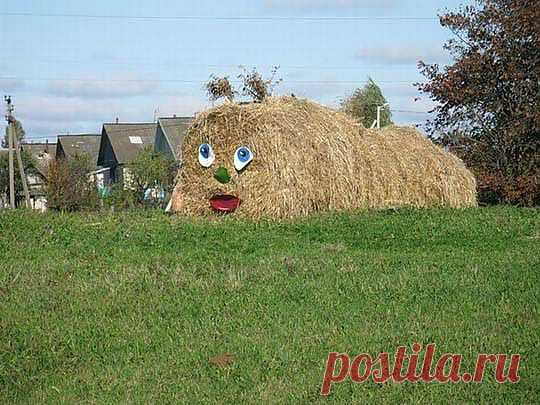 Смешные фотографии http://udivitelnoe.mirtesen.ru/blog/43049116432