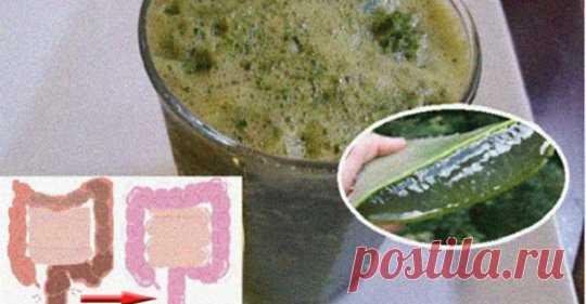 Научитесь выводить до 9 килограммов токсинов из толстой кишки за день и очищать ее - Интересный блог