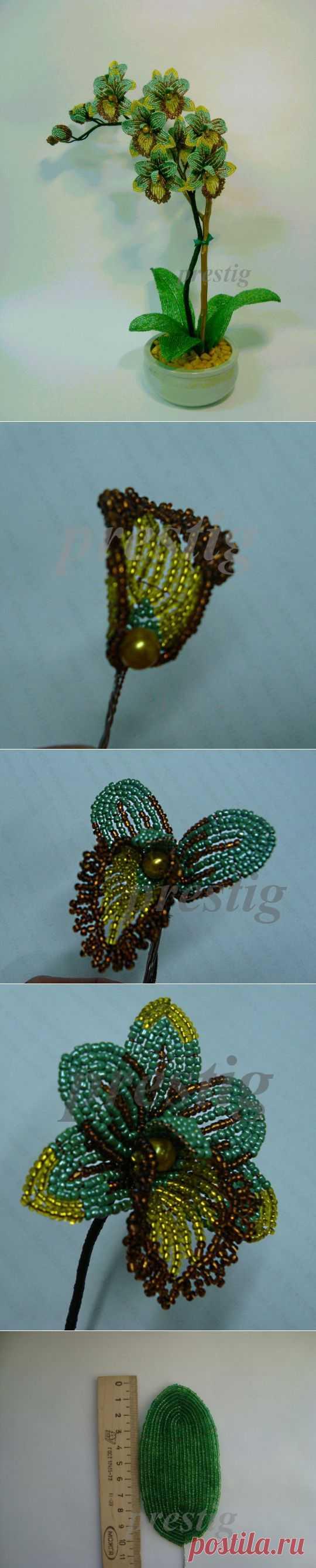 (+1) сообщ - Орхидея из бисера своими руками | СДЕЛАЙ САМ!