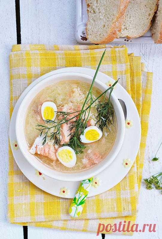Суп с семгой, пшеном и перепелиными яйцами.