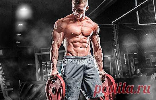 Для роста мышц нужны калории, углеводы и протеин. Но сколько именно?