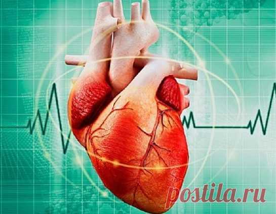 5 простых способов успокоить сердце при аритмии - Образованная Сова