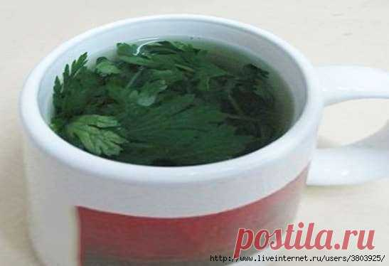Emerald broth for weight loss