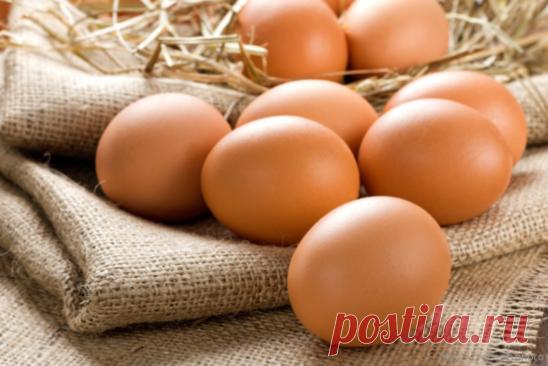 Лучшее средство в борьбе с папилломами-яйцо