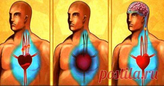 Лишь 50 мл в день этого мощного напитка очищают артерии и предупреждают сердечный приступ! Со временем сосуды в организме человека теряют свою гибкость и эластичность, а на их стенках образуются атеросклеротические бляшки. Частые головные боли, повышенное давление, инфаркт и даже инсульт могут стать следствием такой загрязненности сосудов. Существует множество народных рецептов для очистки сосудов, но сегодняшний метод  — пожалуй, самый эффективный. Хорошо, что природа дае...