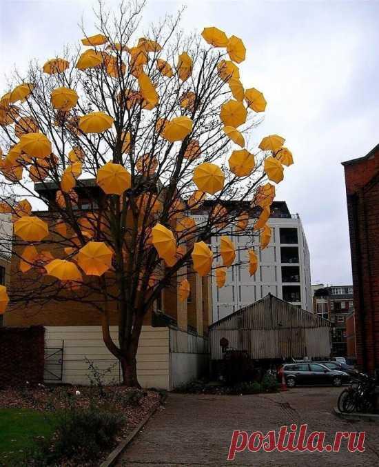 Уличное искусство :)