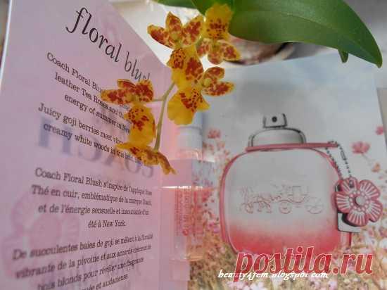 Coach Floral Blush: отзывы и описание аромата или скромное очарование годжи