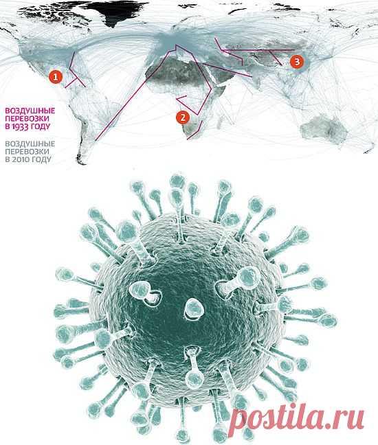 План действий на все случаи гриппа | Men's Health Россия