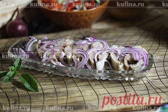 Малосольная скумбрия по-одесски – рецепт приготовления с фото от Kulina.Ru