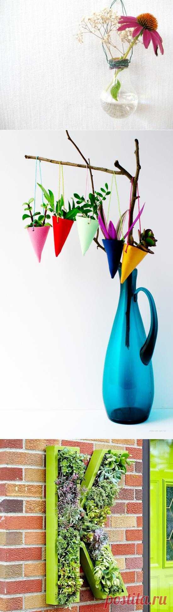 Что делать с многочисленными цветами дома