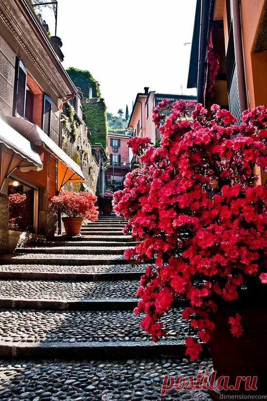 Цветущие улочки Белладжо, Италия