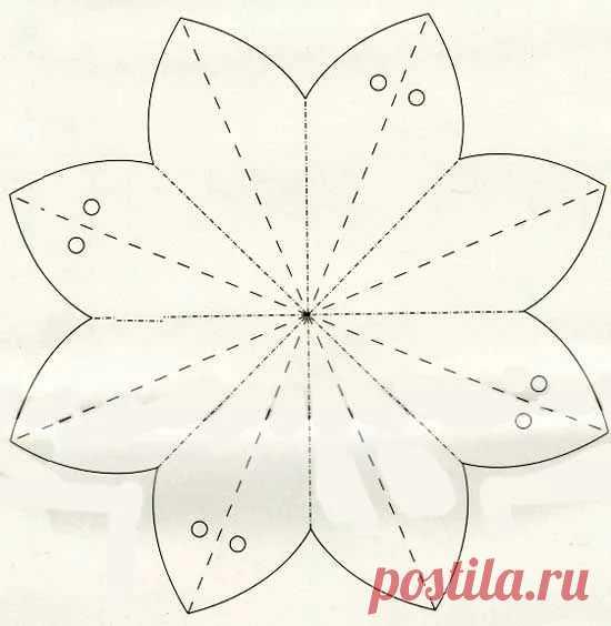 Совой, объемные цветы из бумаги для открытки своими руками схемы