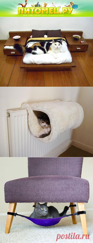 Сделать животное в домашних условиях