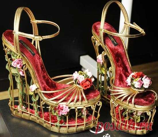 Чудо от Dolce & Gabbana