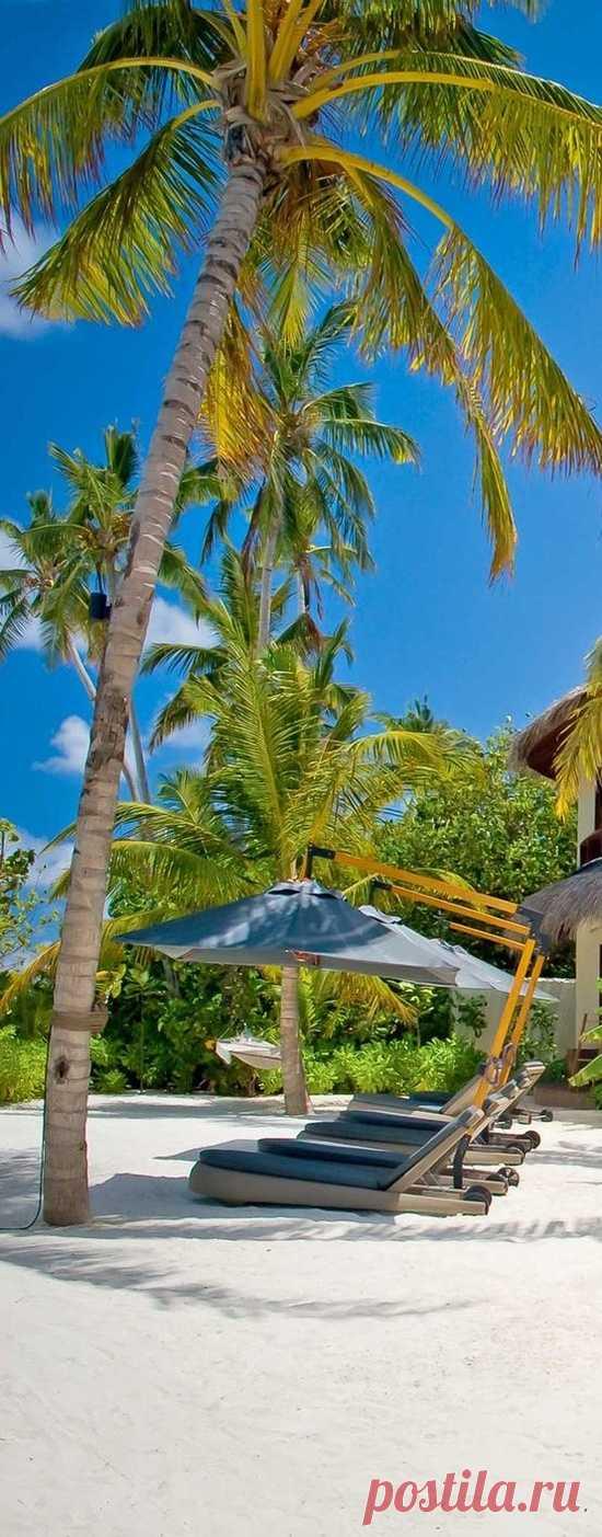 Экзотика, рядом с экватором. Мальдивские острова