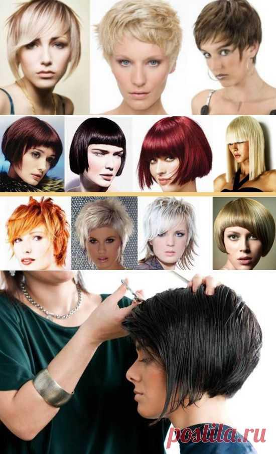 Стрижка французская — вариант для густых волос | ladys-club.com