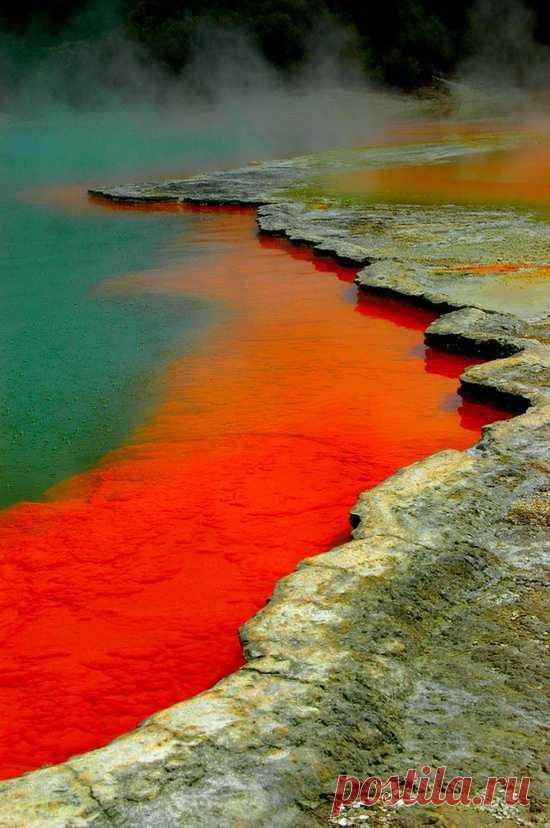 Los milagros de la naturaleza. El territorio reservado Rotorua termal, la Nueva Zelanda