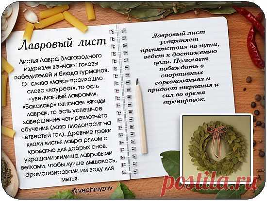 http://dom-ozhag.mirtesen.ru/blog/43873821236