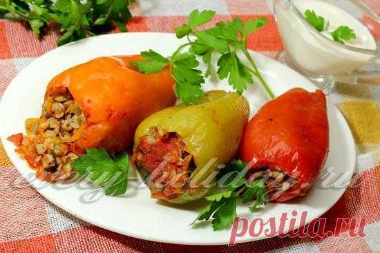 фаршированный перец овощами и гречкой