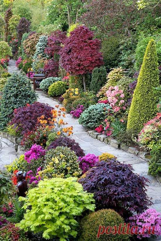 Буйство красок. Сад четырёх сезонов. Англия