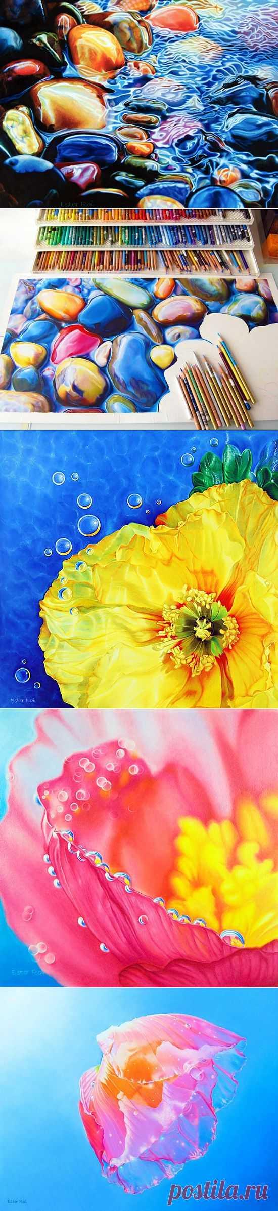 Картины, которые хочется потрогать (ФОТО). Американская художница Эстер Рой рисует при помощи цветных карандашей и воска невероятно реалистичные картины.