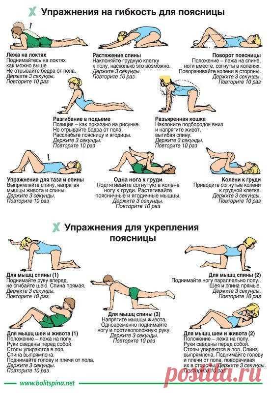 Los ejercicios para el refuerzo de los riñones