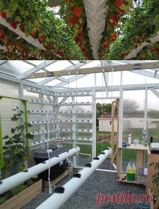 Гидропоника своими руками.. Такая большая установка подходит для теплиц но если вас заинтересовала тема, здесь можно посмотреть как сделать простую гидропонную установку для выращивания огурцов, помидор, зелень, клубнику, землянику, перец можно выращивать и комнатные растения дома.