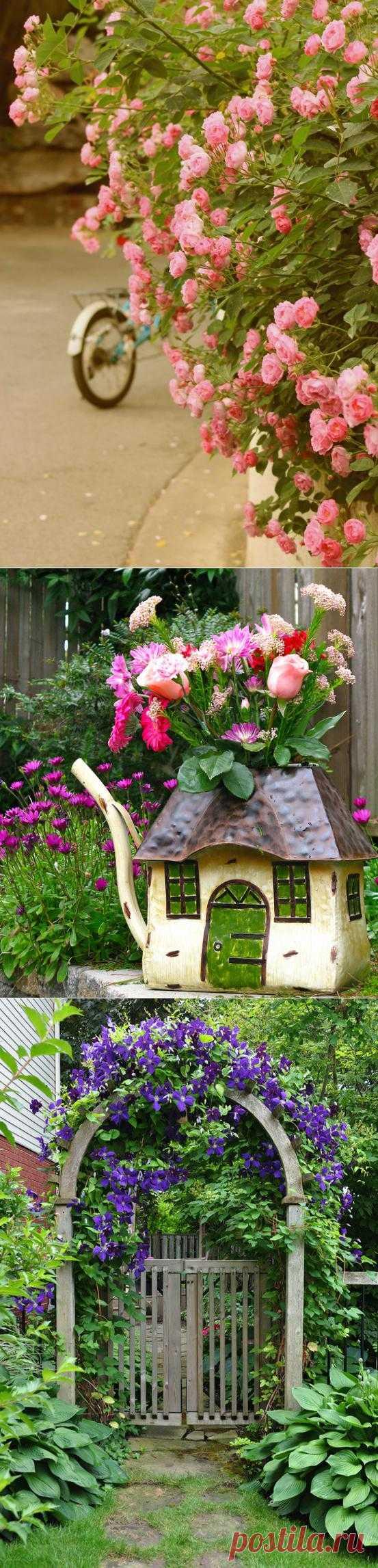 Удивительной красоты цветы