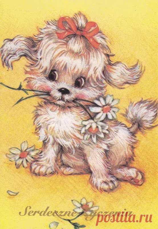 Картинки щенков поздравления