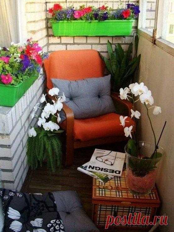 Потрясающие идеи декора летнего балкона Лето уже наступило, а вы подготовили свой балкон к новому сезону? Если вы еще этого не сделали, то собранные нами идеи декора могут оказаться полезными для вас. Самая простая идея для летнего декора —...