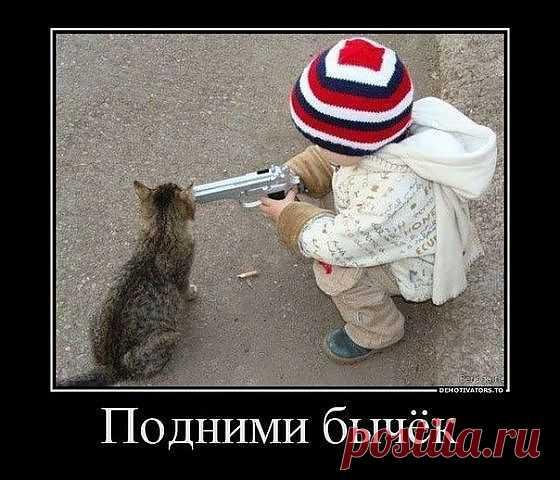 Это не Я!!!!!!))))))))