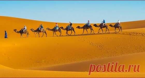 Marrakech Excursion | Desert Tour From Marrakech | Sunny Excursion