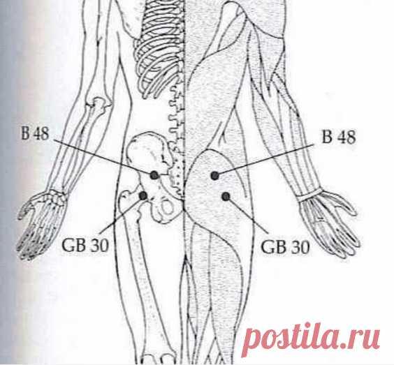 Нажмите на эти 2 точки и вы избавитесь от боли в пояснице, тазобедренном суставе, ногах и не только…
