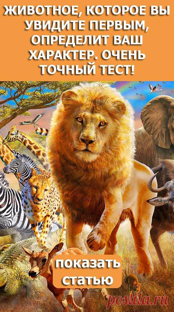Смотрите! Животное которое вы увидите первым определит ваш характер Очень точный тест