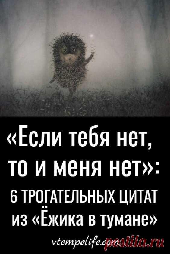 Картинки ежик в тумане с цитатами