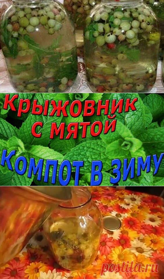 Компот из черной смородины с яблоками - Яндекс.Видео