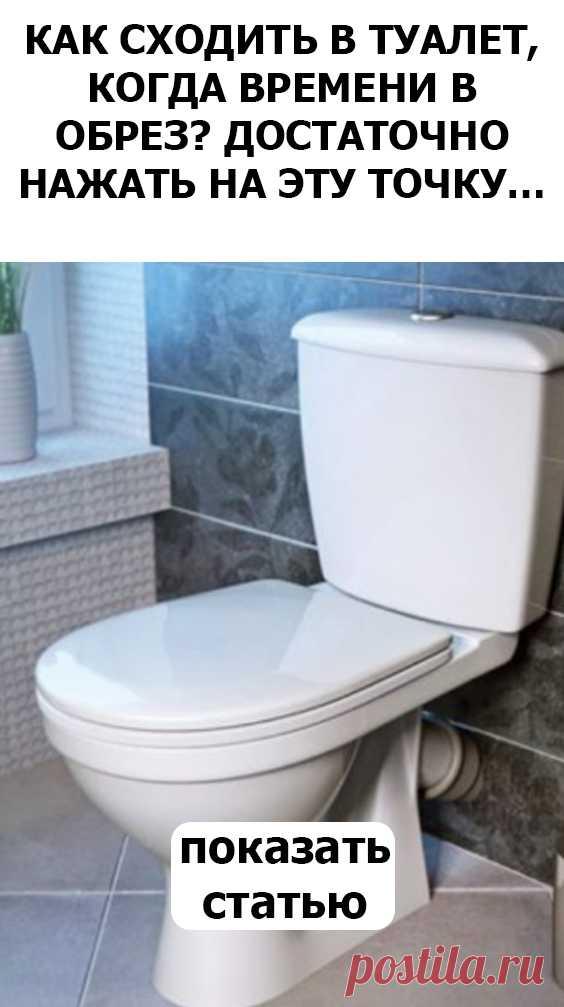СМОТРИТЕ Как сходить в туалет, когда времени в обрез? Достаточно нажать на эту точку…
