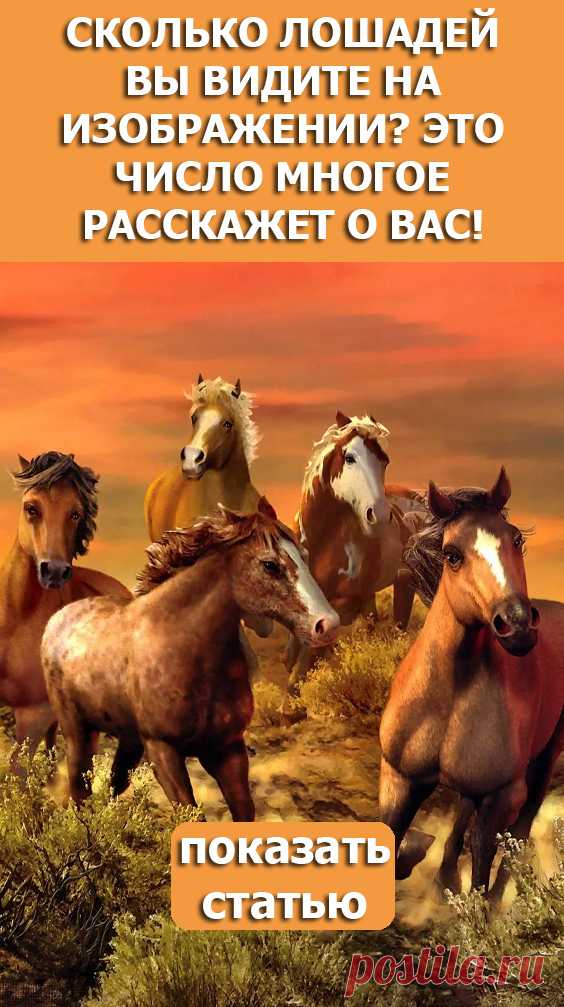 СМОТРИТЕ: Сколько лошадей вы видите на изображении? Это число многое расскажет о вас!