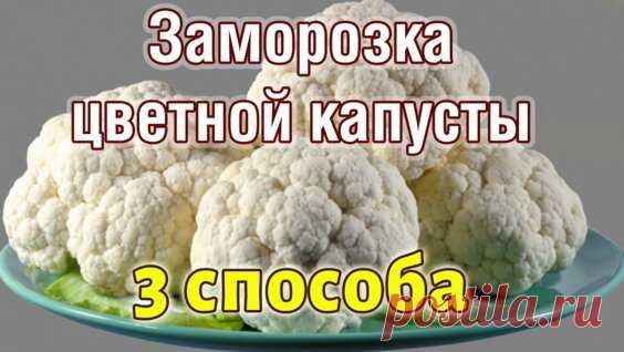 Заморозка Тыквы как заморозить тыкву на зиму 3 Способа пюре, кубиками, натертой... - Яндекс.Видео